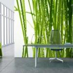 Indoor Plants - Wall Mural Image