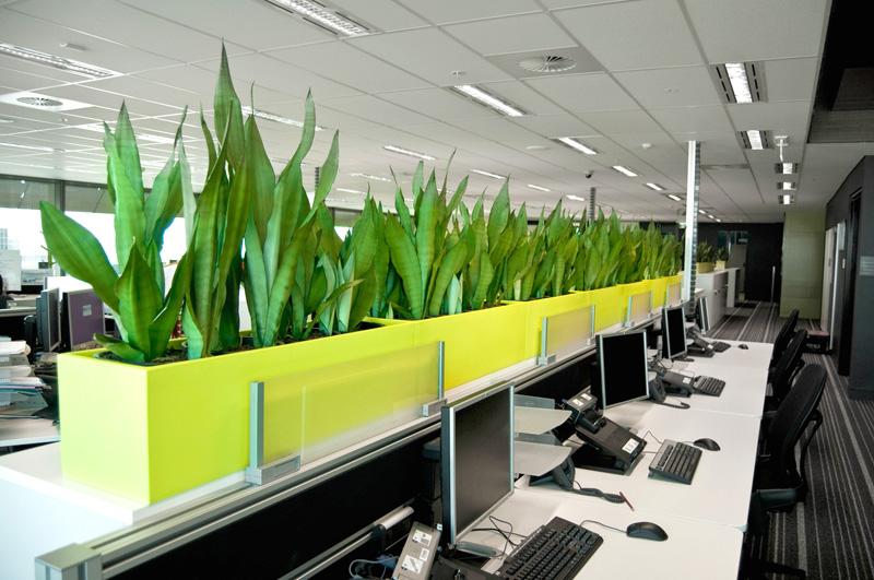 Reduce stress with indoor plants adentro design - Enhancing work efficiency home indoor plants ...